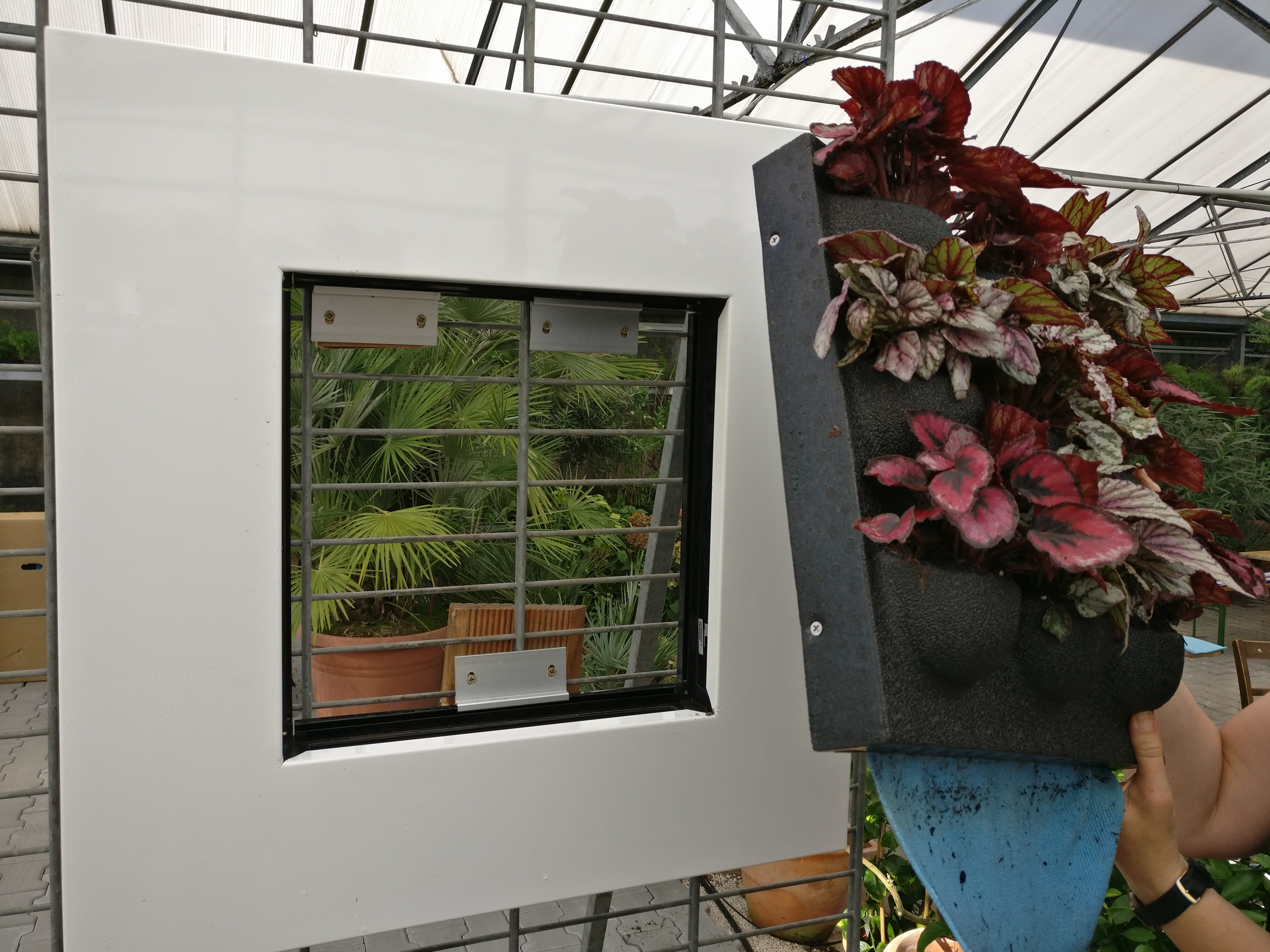 lebende bilder pflanzen als lifestyle schwabach meier. Black Bedroom Furniture Sets. Home Design Ideas