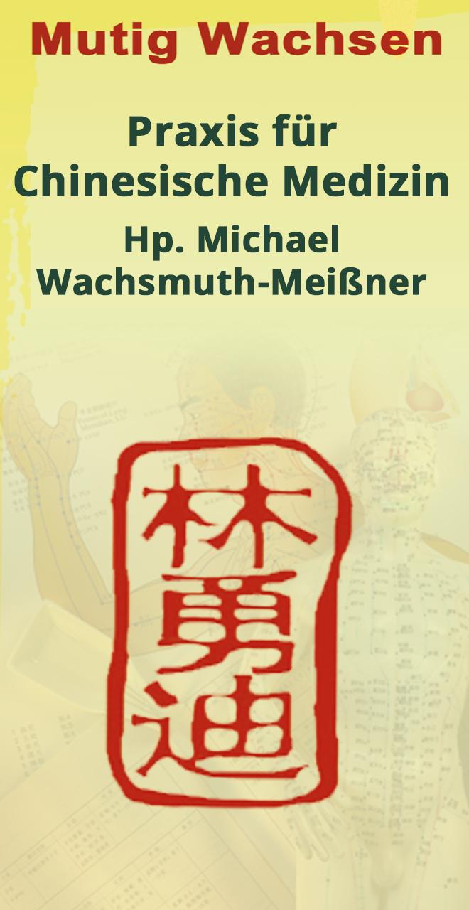 Praxis für Chinesische Medizin Michael Wachsmuth-Meißner