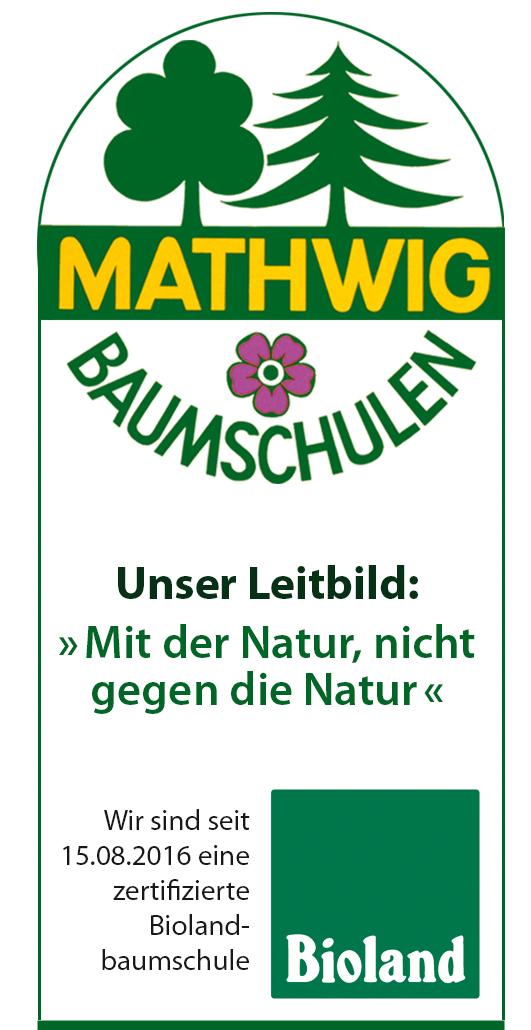Klaus Mathwig Baumschulen